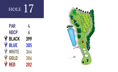 in-hole17